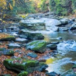 Cowanshannock Creek apmi 1982