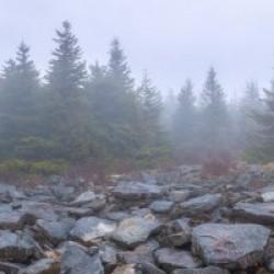 Rock Field apmi 1604