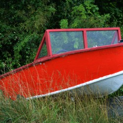 boat red in weeds 6287