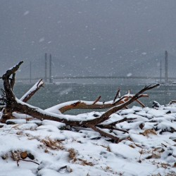 Indian River Bridge with Driftwood and Snow