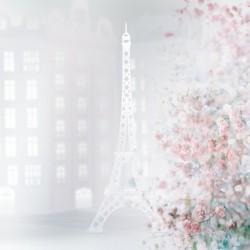 Daltana Pastel Paris Allanita