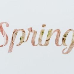 Daltana Spring Drill