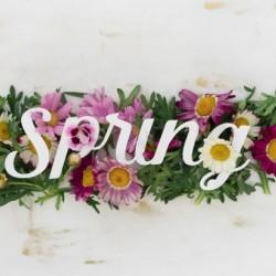 Daltana Spring Irill