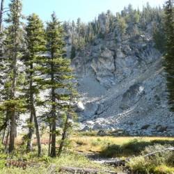 Sentinels on dry creek