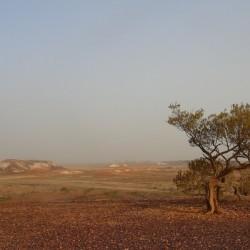 The breakaways South Australia