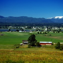 Comox Valley Thirty Years Ago