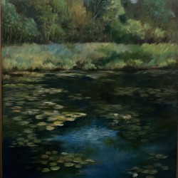 Calhoun pond