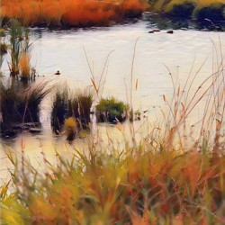 Fall Marsh 2