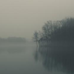 Fog and Peace