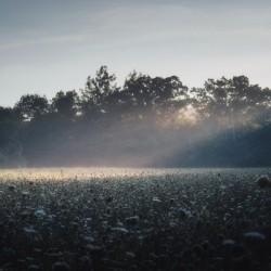 Pennsylvania Sunrise