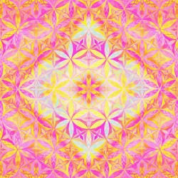 Flower of Life Red Pink