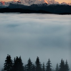 Mont Blanc and its sea of clouds