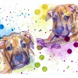 2 Colorful Dogs Brindle - Portrait of Emma and Louis