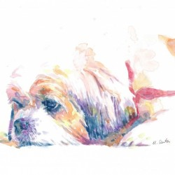 Shih Tzu Dog Portrait - Portrait of Lucy
