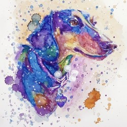 Weiner Dog - Portrait of Margot