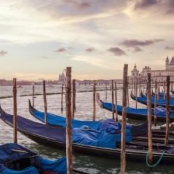 VENICE Gondolas & Santa Maria della Salute | Panorama