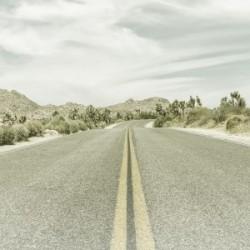 Highway & Joshua Trees | Vintage Panorama