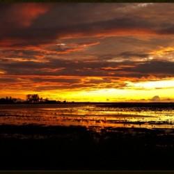 granite belt sunset