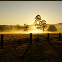 glenreagh sunrise