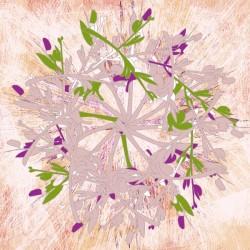 Mandala Floral and Texture