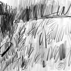 Lawn sketch