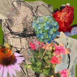 flowersandflex