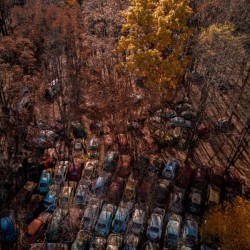 Abandoned Car Graveyard