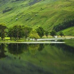Green Peace, Buttermere, UK