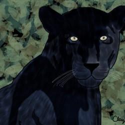 Black Jaguar. Clayton T