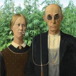 Modern Day Farmers