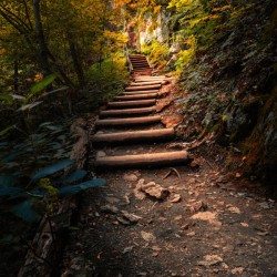 Climbing Colors
