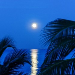 Moon rise at Cayman Kai