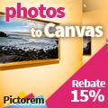 Pictorem Canvas Print Coupon Code