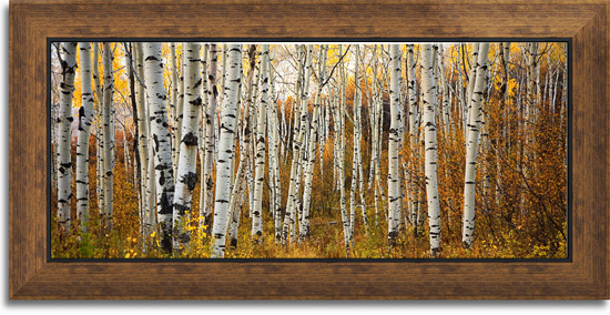 Canvas Print Sample with Decorating Frame