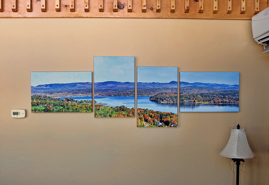 Multi Panel Canvas