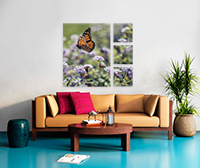 4 Asymetric 30x40 & 12x12  Stretched Split Canvas Print Canvas print
