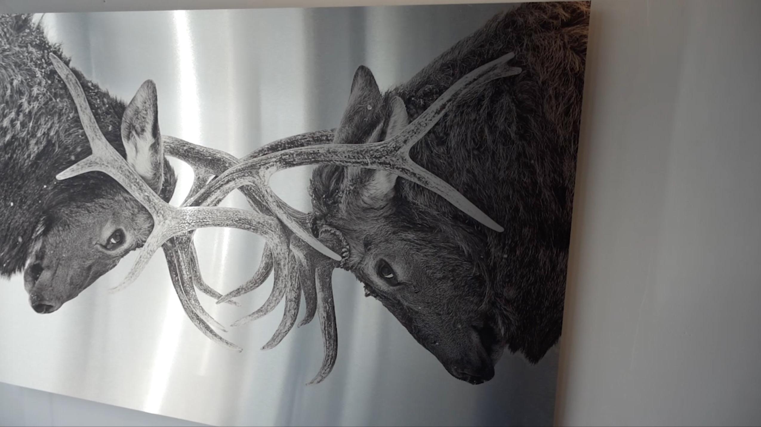 Printing photo prints near metal