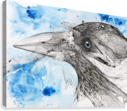 Illustration of a bird's eye and beak with mottled blue and white background  Canvas Print