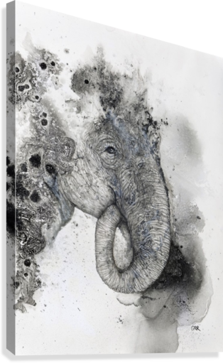 ILLUSTRATION OF AN ELEPHANT'S HEAD PACIFICSTOCK  Canvas Print