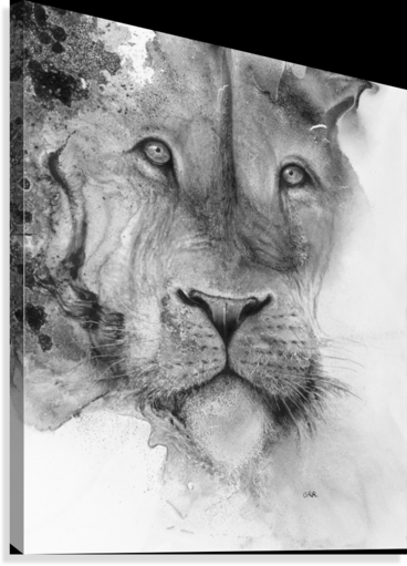 Illustration of a lion's face and a mottled background  Impression sur toile