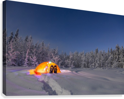 A glowing tent covered in string lights sits in the middle of an snowy spruce forest snowshoes in the deep snow outside the tent moonlight casting shadows ... & A glowing tent covered in string lights sits in the middle of an ...