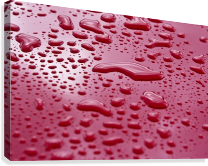 Liquid Drops On Red Surface  Canvas Print