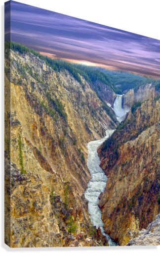 Grand Canyon of Yellowstone - The Falls and River in the Fading Light of Day  Yellowstone National Park at Sunset  Canvas Print