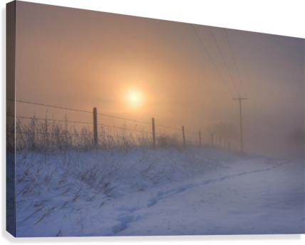 Foggy Winter Sunrise Over Barbed Wire Fence And Hydro Lines, Alberta Prairie  Canvas Print