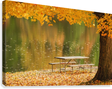 A Picnic Table Beside A Tranquil Lake With Golden Leaves On The - Picnic table print