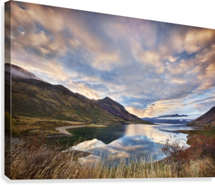 Morning Delight at Lake Hawea  Canvas Print