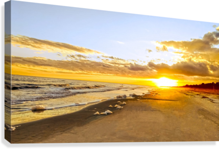 The Summer Sun Sets in the Carolinas  Canvas Print