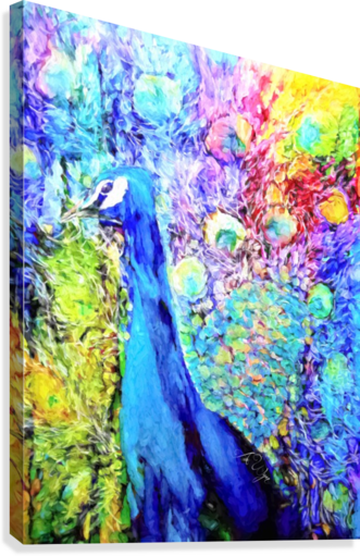 Impasto Peacock  Canvas Print