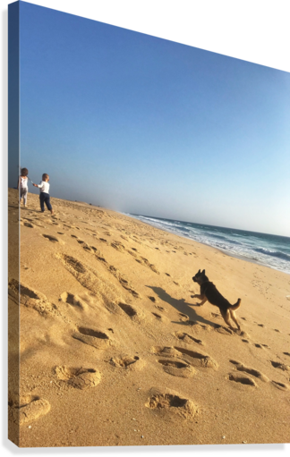 Dog and kids on the beach in Portugal  Canvas Print