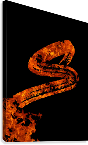 Burning on Fire Letter S  Canvas Print
